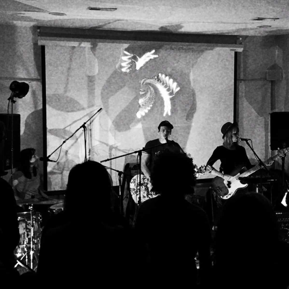 Live Music Event